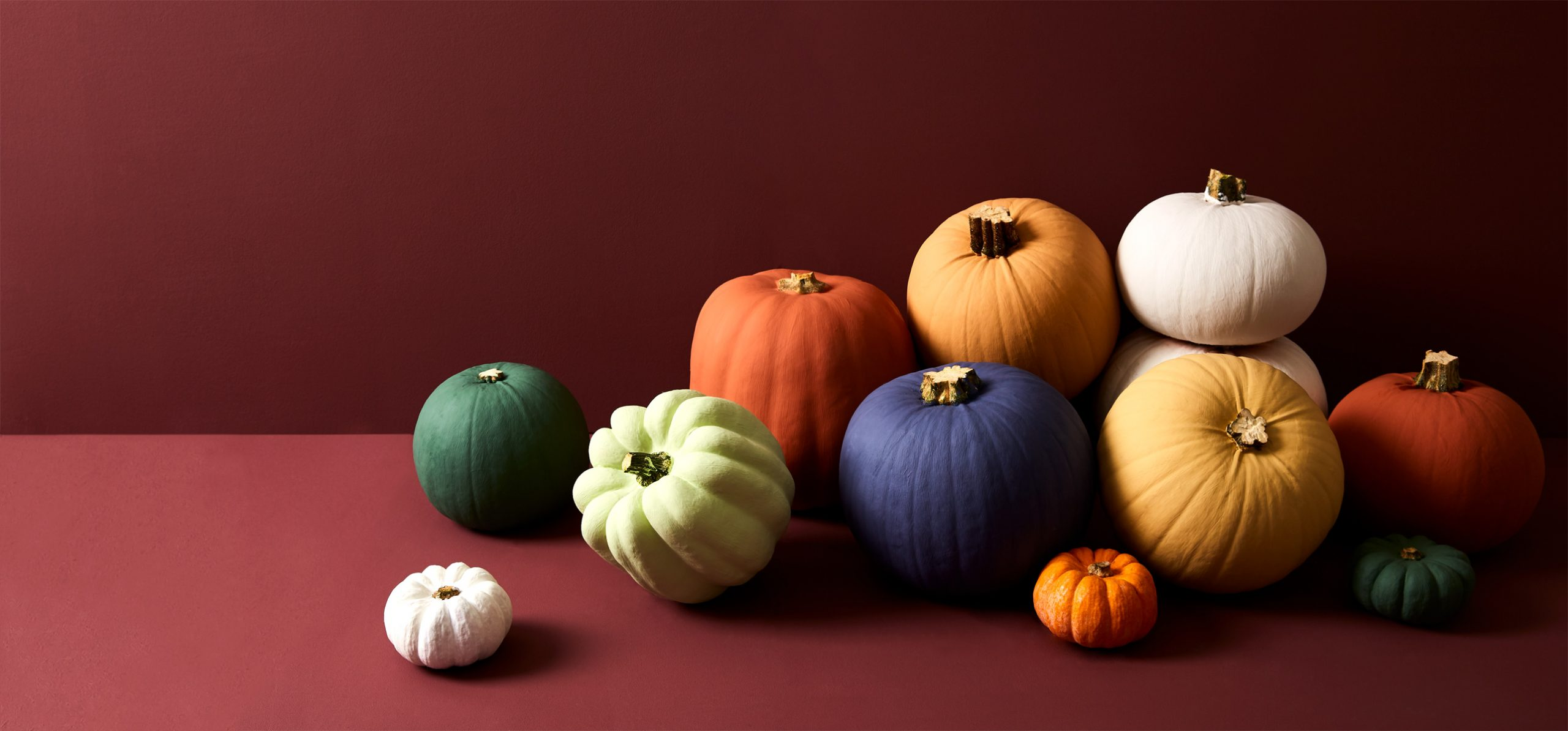 Painted pumpkins, Earthborn style!