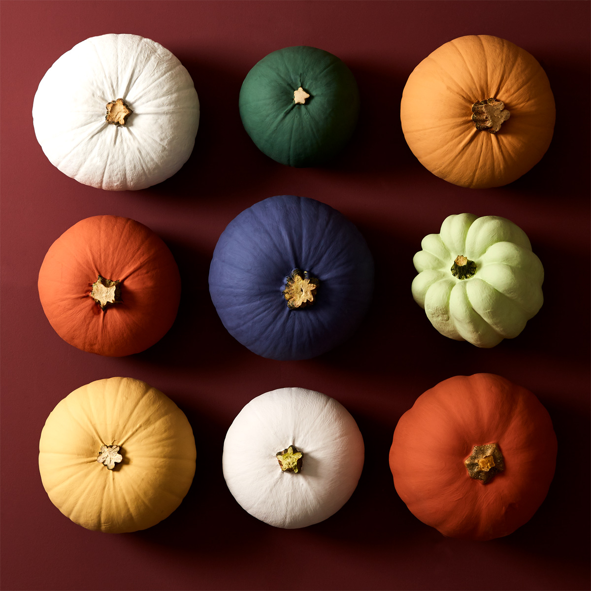 Earthborn sample pots are ideal for Halloween painted pumpkins this Autumn!