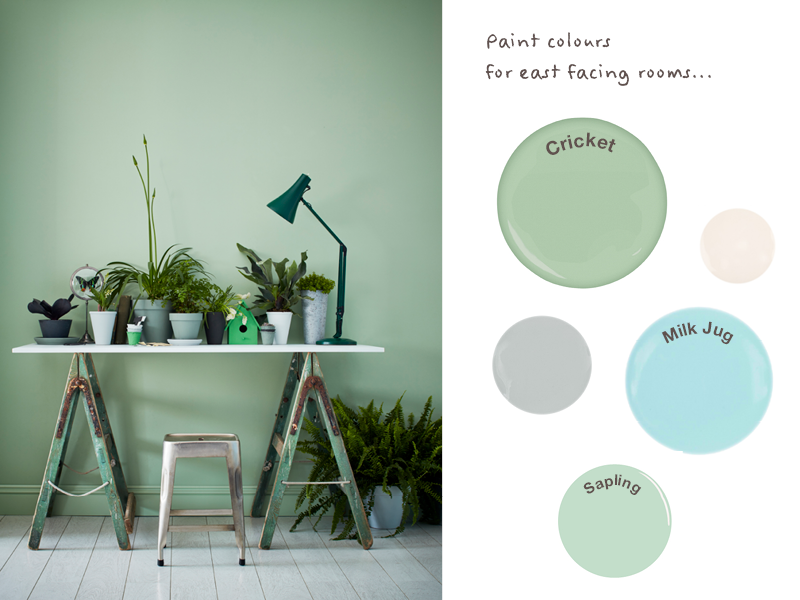 Green and blue paint colours like Earthborn Sapling and Cricket work well in East facing rooms