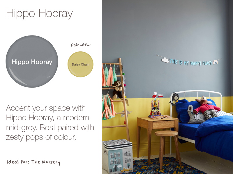 Earthborn Hippo Hooray is a brand new eco paint colour for 2019. A modern mid-grey.