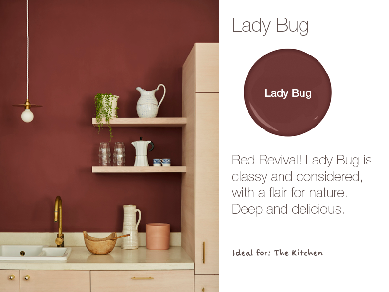 Earthborn Lady Bug is a brand new eco paint colour for 2019. Deep and delicious.