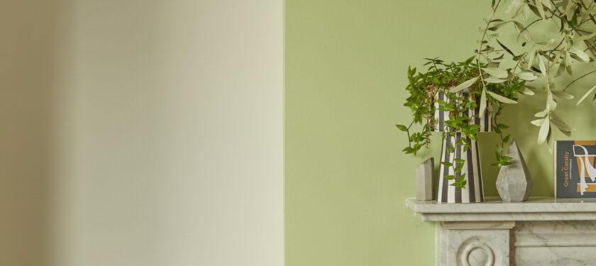 Living Room ft. Flutterby and Grasshopper