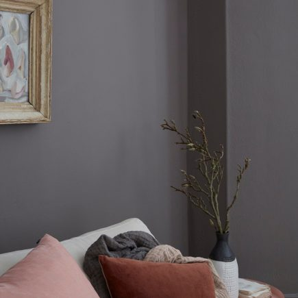 Rocky Horse is a luxurious grey-brown paint colour by Earthborn