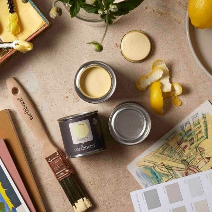 Earthborn paint colour Jemima