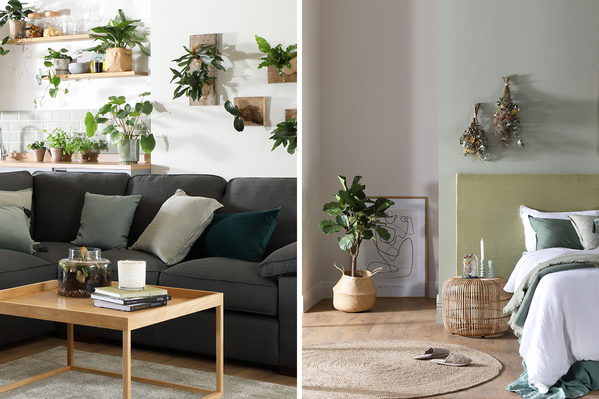 Green foliage helps create cleaner air and a more relaxed environment. Featuring Earthborn eco paints.