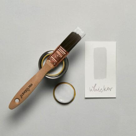 Brush shot - Whisker